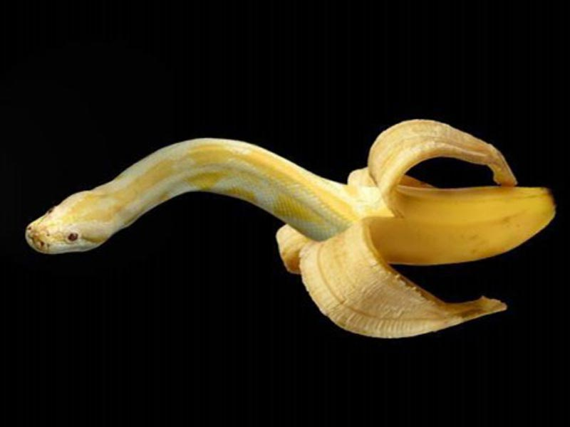 Banana fruit carving pictures names a z with
