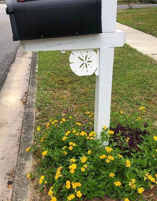 Beach Mailbox Brackets Sea Life Sand Dollar