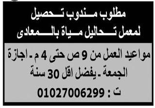بالرواتب وظائف واعلانات  الوسيط الجمعة 2021/01/08