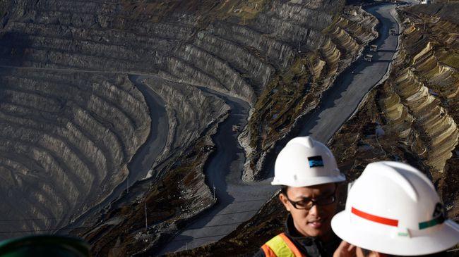 PT. Freeport Angkat Suara Soal Buruh Ilegal China di Papua