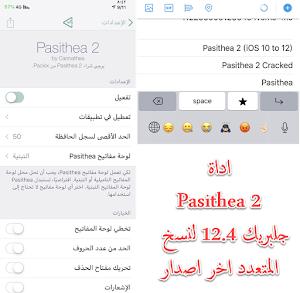 اداة Pasithea 2 جلبريك 12.4 لنسخ المتعدد اخر اصدار