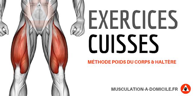 musculation à domicile exercice musculation cuisses quadriceps ischios jambier poids de corps haltère