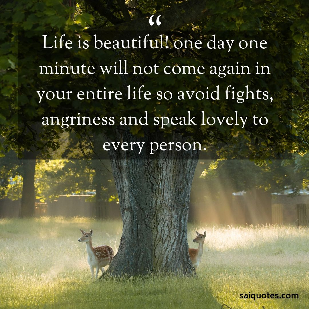 Sai Quotes: Life Is Beautiful Quotes