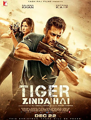 Tiger Zinda Hai 2017 Hindi 480p BluRay 450MB