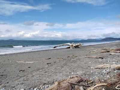 Moran Beach - Whidbey Island