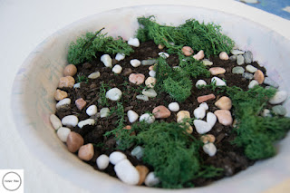 sassolini e licheni per miniature
