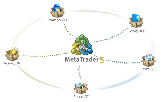 API MetaTrader