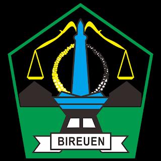 Kabupaten Bireuen Logo Vector