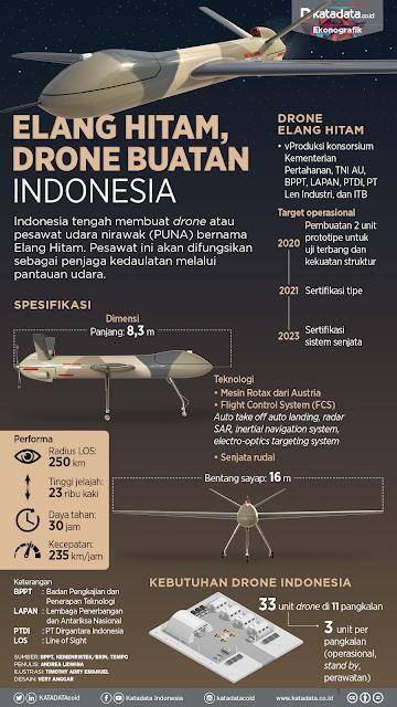 Profil Elang Hitam, Drone Buatan Indonesia