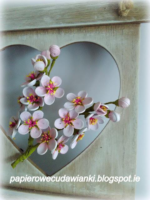 Quilling-kwiat wiśni ?-jak zrobić -cieniowanie