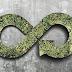 Kiertotalouden ratkaisuilla voidaan vähentää kasvihuonekaasupäästöjä ja turvata luonnon monimuotoisuutta