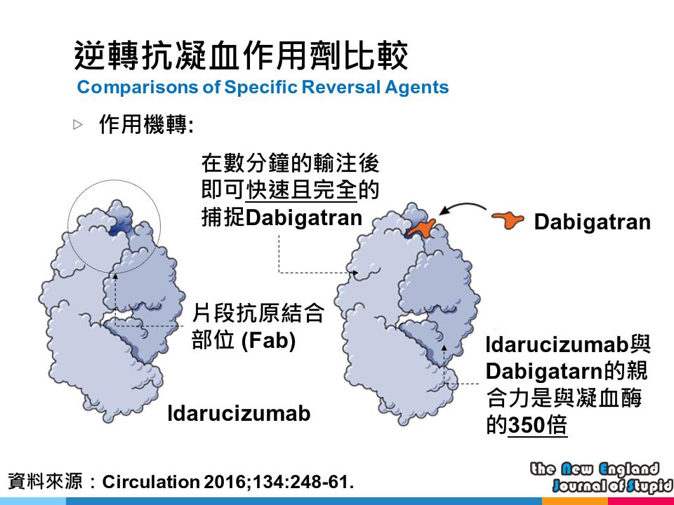 [臨床藥學] 報告用大圖:新型口服抗凝血藥品解毒劑機轉 (Mechanism of NOACs Reversal Agents) - NEJS