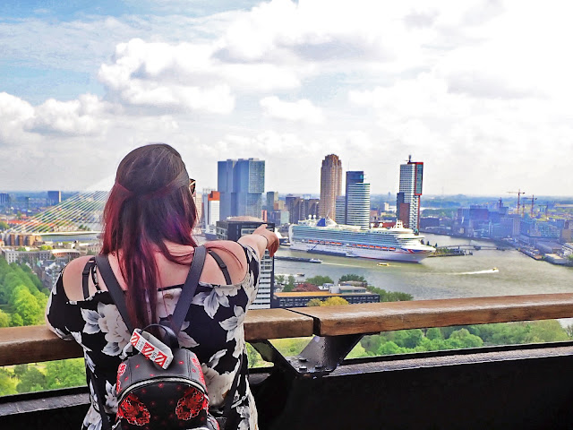 What to do in Rotterdam City Guide Cruise Port Northern Europe Cruise Euromast