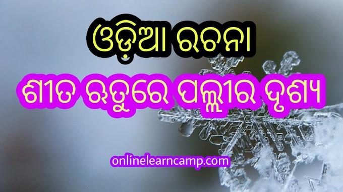 Odia Essay Sita Kalina Pallira Drushya in Odia Language Odia Essay App