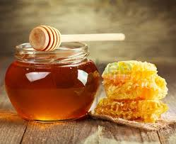 Κυνηγώντας το μέλι του πεύκου...