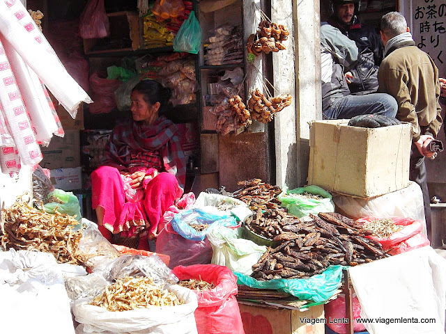 Peixes com moscas à vendaem Kathmandu