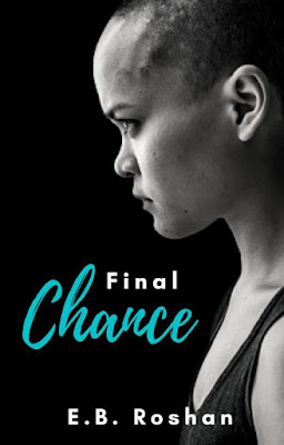 Book Launch Spotlight ~ Final Chance, by E.B. Roshan