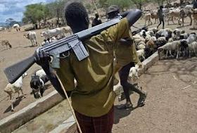 Cattle herdsmen attack village in Kaduna State killing 20