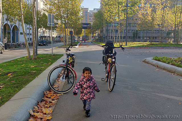 Things to do in Eindhoven - Cycling