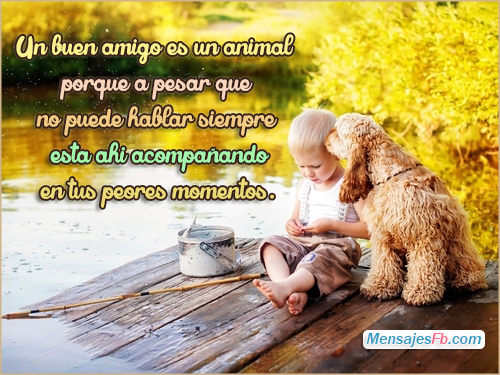 Best Frases Para Reflexionar Amor Y Amistad Image Collection