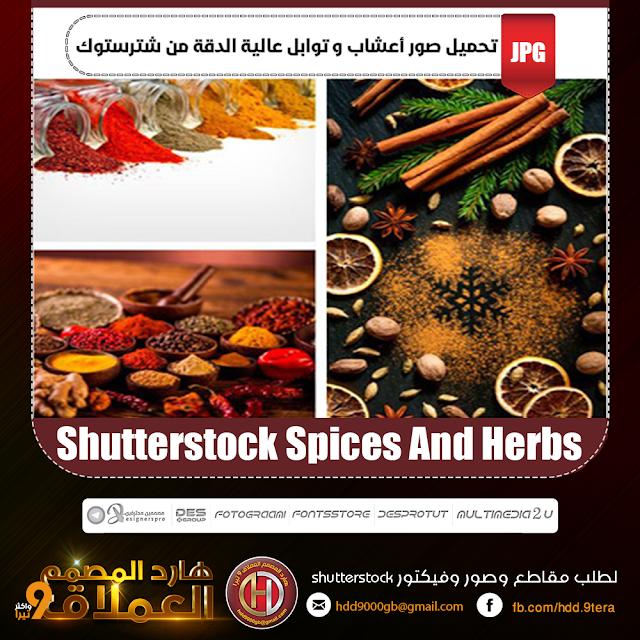 تحميل صور أعشاب وتوابل بدقة عالية من شترستوك Shutterstock Spices And Herbs
