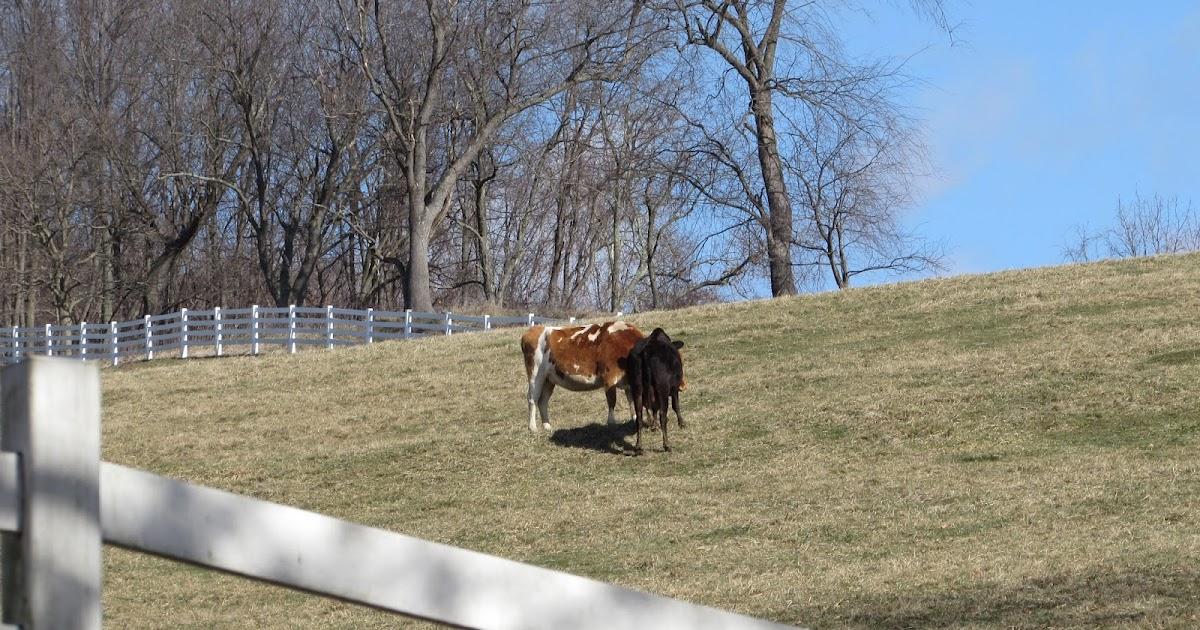 Round Hill Park Farm Elizabeth Township Allegheny County