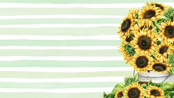 Sunflower Device Wallpaper