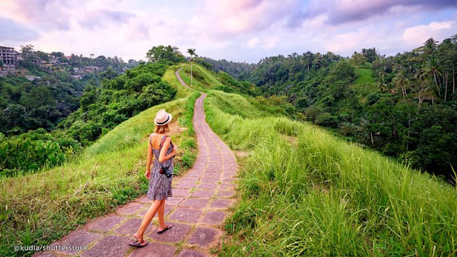 Explore Ubud