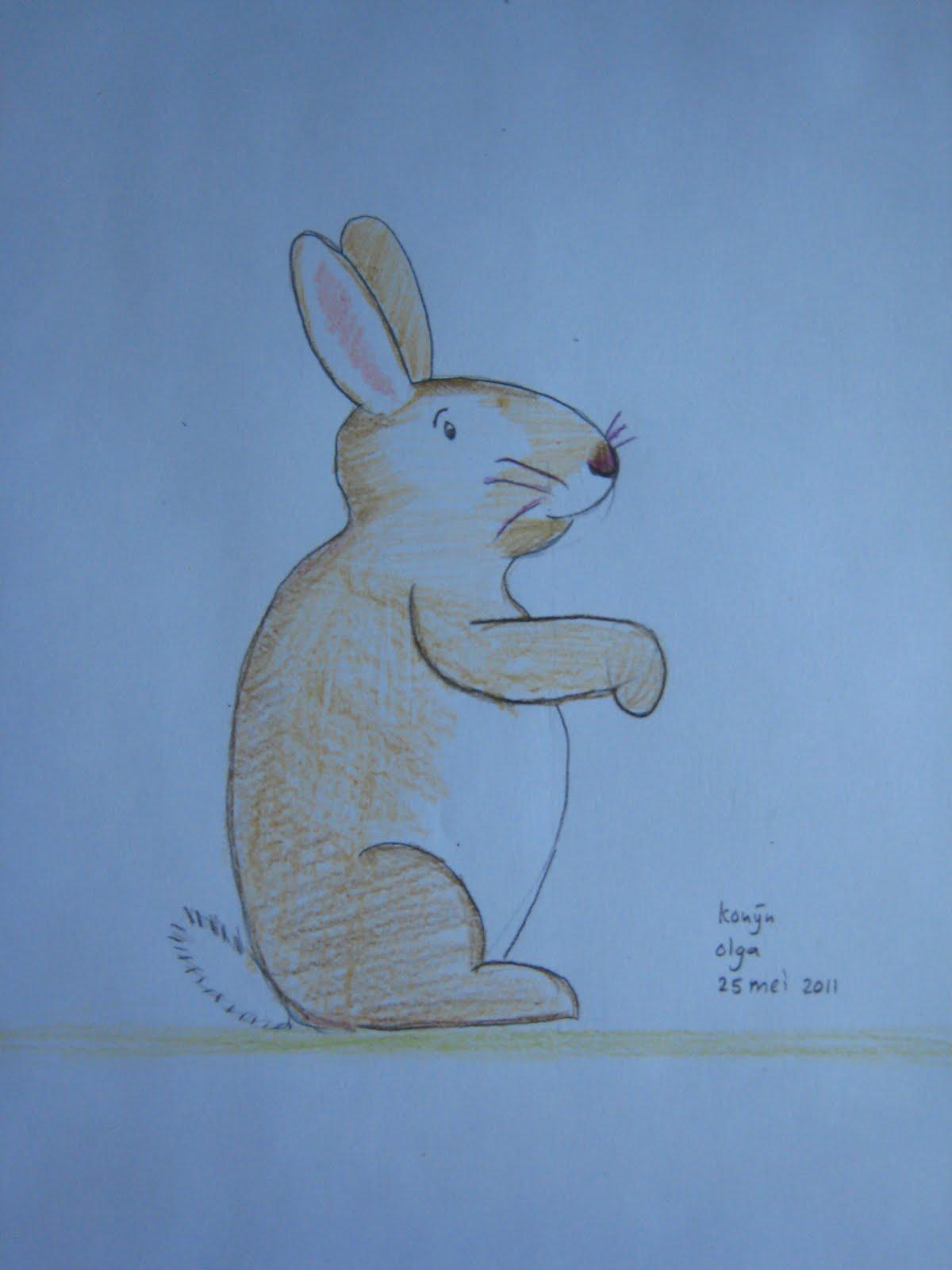 Welp koeteren: knutselen voor beginners: tekening konijn QS-02