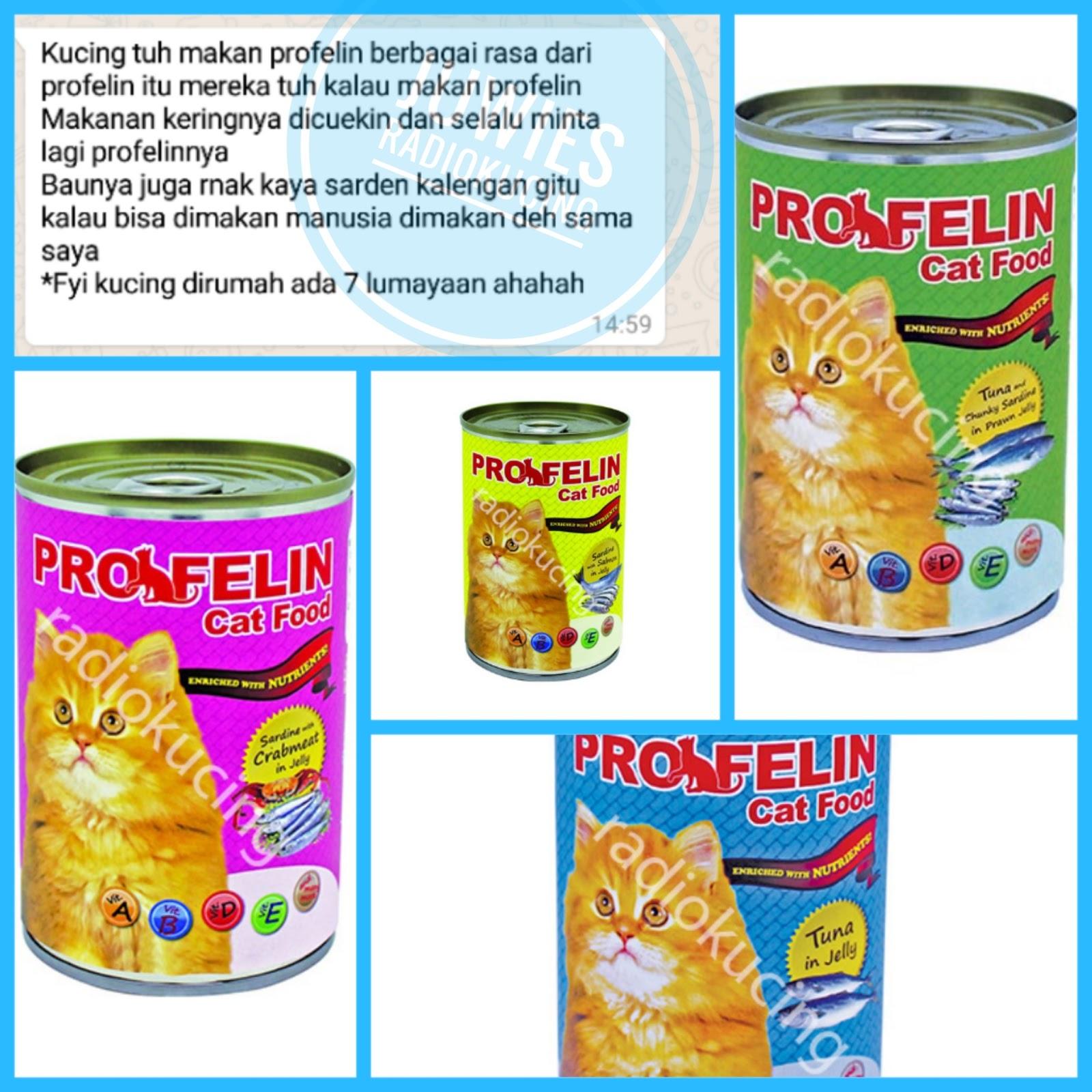 Review Makanna Kucing Profelin Wet Food Kaleng Radiokucing Com