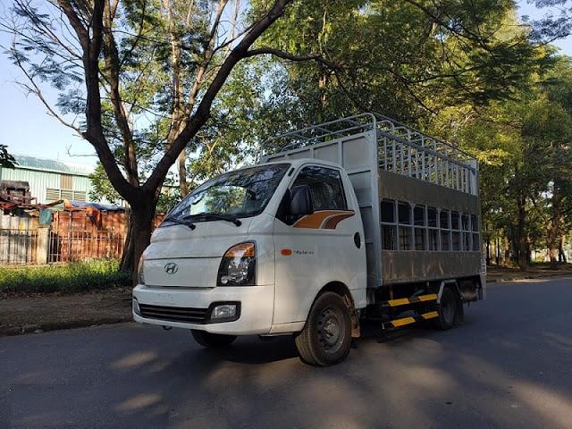 Hyundai H150 thùng chở lợn heo