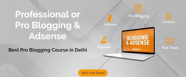 blogging course in delhi