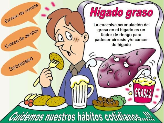 HIGADO GRASO - CAUSAS