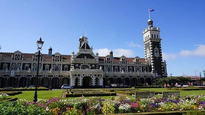 Dunedin Guide