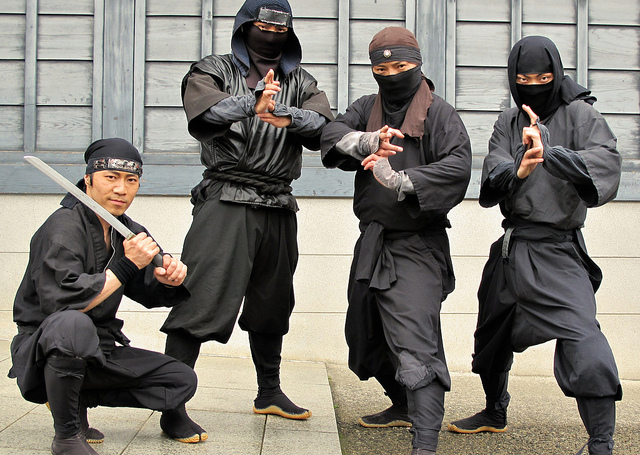 grand ninja theater, Edo Wonderland di Jepang