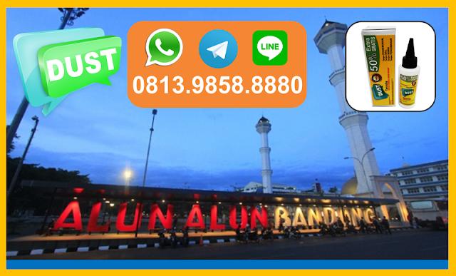 Jual Obat Anti Rayap di Bandung