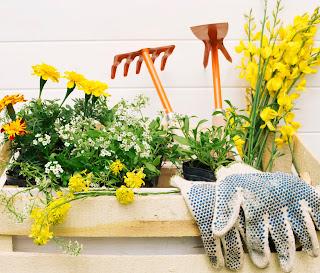 Bahçesi Tadilatı-Bahçe Düzenlemesi- Bahçe Dekorasyonu