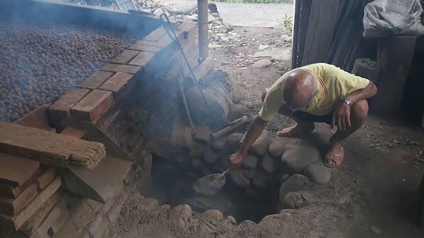 二水老農茆木聰古法土窯烘焙龍眼乾 果肉Q彈帶柴燒香氣