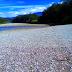 Indahnya sungai  Baliem Saat Kemarau
