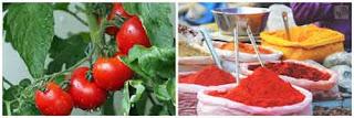 Spiced-Ripe-Tomato-Chutney