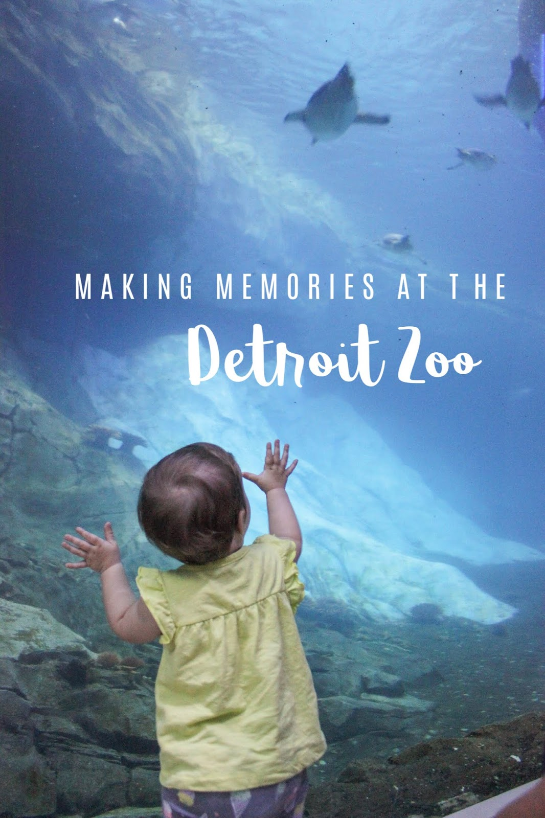 family-friendly fun at the Detroit Zoo, Michigan