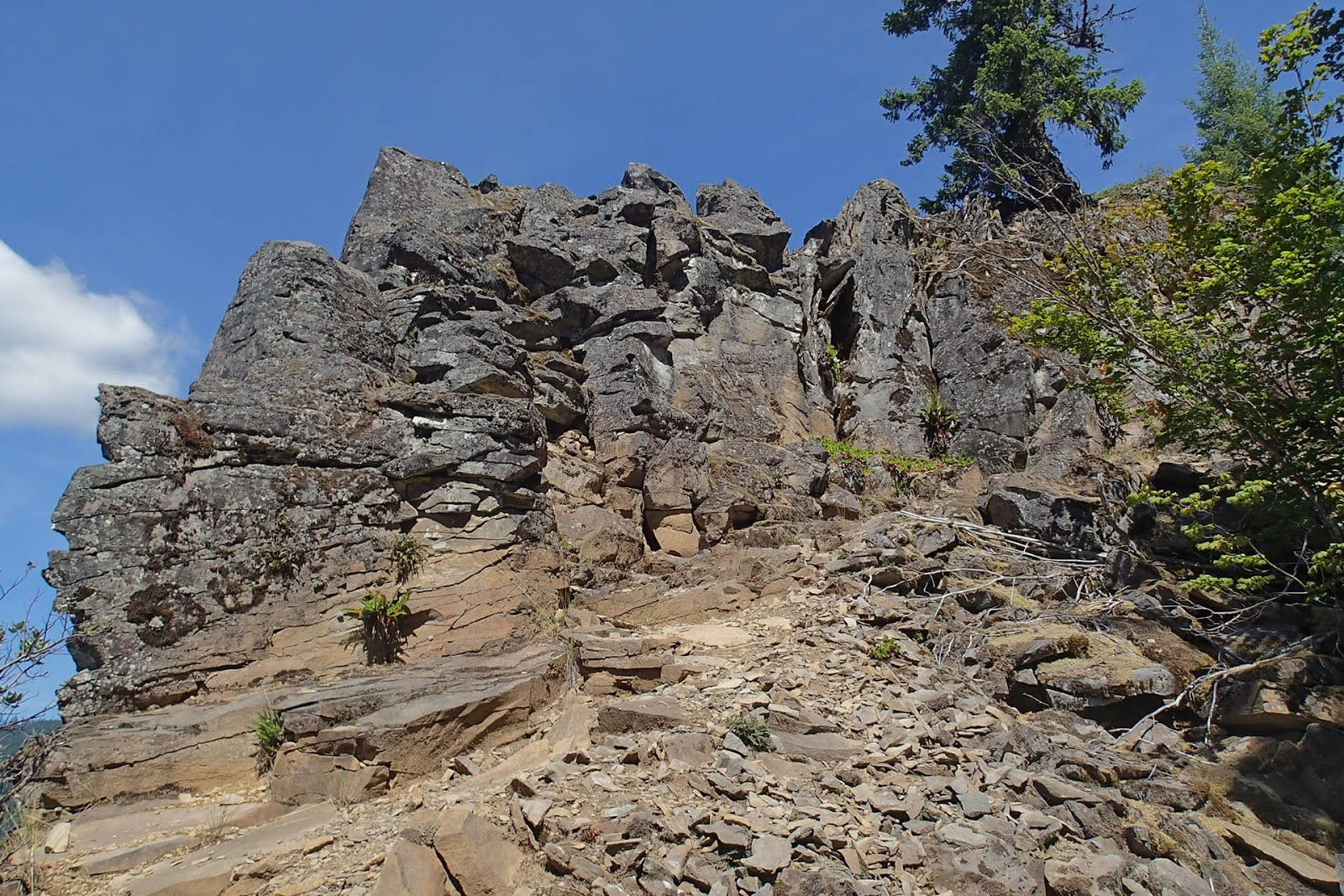 Casing Oregon: A Case-Style Family Outing: The Daly Lake Area