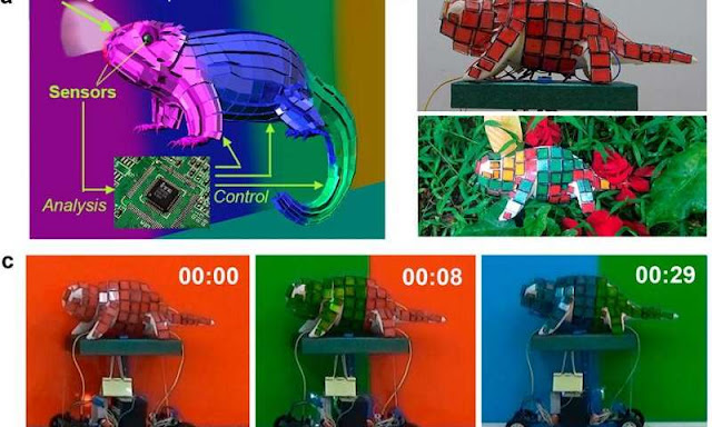 Mechanical Chameleon through Dynamic Real-Time Plasmonic Tuning