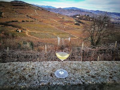 vino soave