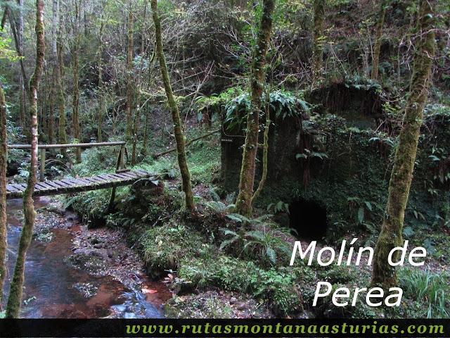 Ruta de los Molinos del Rio Profundo: Molín de Perea