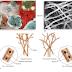 Karakteristik, Struktur, dan Reproduksi Jamur