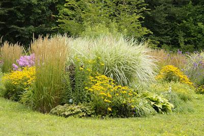 Volumen vegetal de un jardín