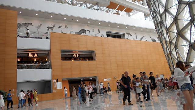 上海自然博物館内部