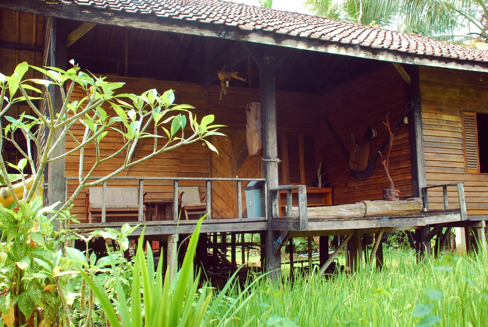 Penginapan / Cottage di The Pikas Aartventure Resort