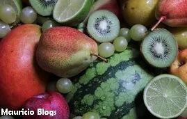 maqueta celula vegetal material comestible